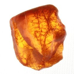 Natural baltic amber 4.70CT #640